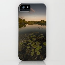 Water Lilly Landscape iPhone Case