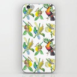 Birds #3 iPhone Skin