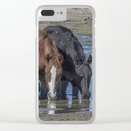 Mustangs Sharing What's Left of the Water Clear iPhone Case