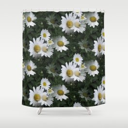Many Daisies Shower Curtain