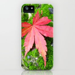 Leaf Zen iPhone Case