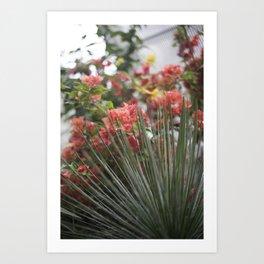 Greenhouse Plants Art Print