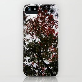 Art Drops in the Air (Japan) iPhone Case