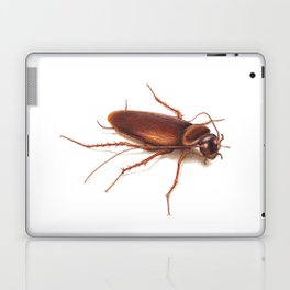 Roach by Lars Furtwaengler | Colored Pencil / Pastel Pencil | 2014 Laptop & iPad Skin