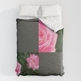 Pink Roses in Anzures 1 Blank Q6F0 Comforters