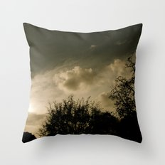 Pastime Throw Pillow