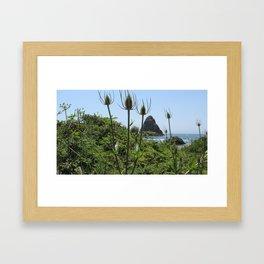 Seascape and Thistles Framed Art Print