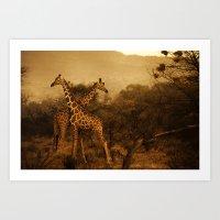 giraffes Art Prints featuring Giraffes by DIEGO ARROYO