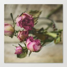 Yesterday's Roses Canvas Print