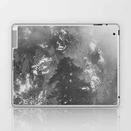 Mist Laptop & iPad Skin