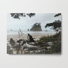Coastal Island, Framed by Nature, 2nd Beach, Olympic National Park, La Push, Washington Metal Print
