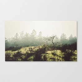 Etched Canvas Print