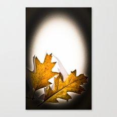 Egg Leaf Canvas Print