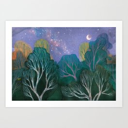 Starlit Woods Art Print