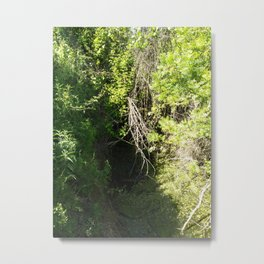 Waterfall branches Metal Print