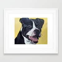pit bull Framed Art Prints featuring Pit Bull by WOOF Factory