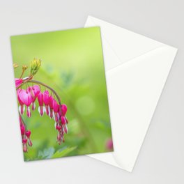 bleeding heart - Lamprocapnos spectabilis Stationery Cards