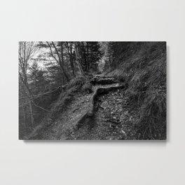 The trail Metal Print