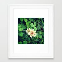 clover Framed Art Prints featuring Clover by ADH Graphic Design