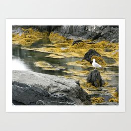 Yellow Seagull Art Print