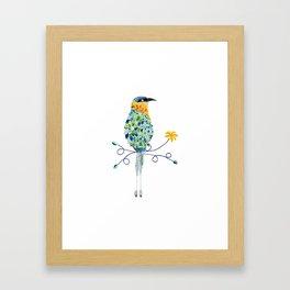Bird of Costa Rica, pajaro Bobo Framed Art Print