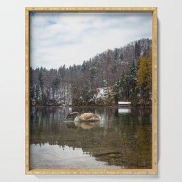 Beautiful scene of swan (lat. Cygnus olor) on the lake Serving Tray