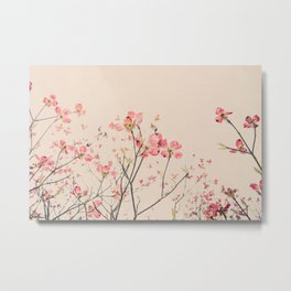 Vintage Spring Botanical, Peaches and Cream -- Pink Dogwood Flowers on Ivory Ground Metal Print