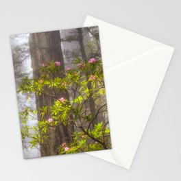 Forest Fog & Blooms Stationery Cards