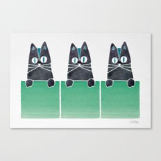 Cats in Boxes Canvas Print