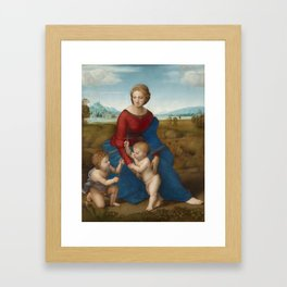 Madonna in the Meadow by Raphael Framed Art Print