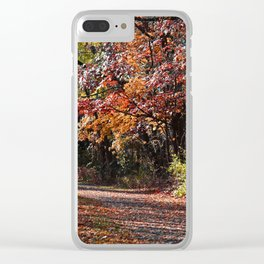 Emotional Collapse Clear iPhone Case