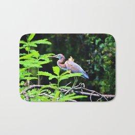 Juvenile Tricolored Heron Bath Mat