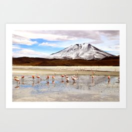 Pink Flamingos & a Peak in the Andes Art Print