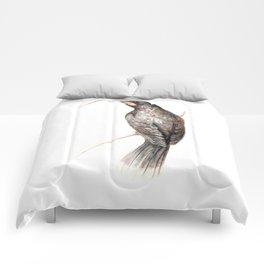 Huia - a native New Zealand bird 2011 Comforters