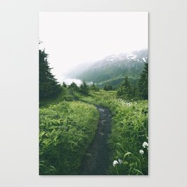 Happy Trails XIX Canvas Print