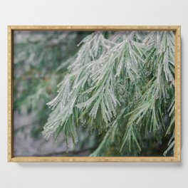 Frozen Evergreen Trees Serving Tray