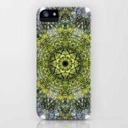 Light Shining Through a Tree Fractal iPhone Case