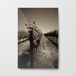 Napa, California - Grape Juice - B&W Metal Print