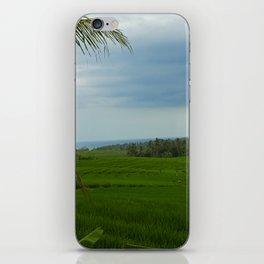 Ricefields near Ubud iPhone Skin