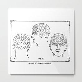Phrenology Metal Print