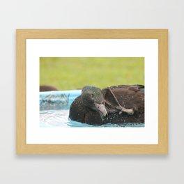 Scrub-a-Dub Framed Art Print