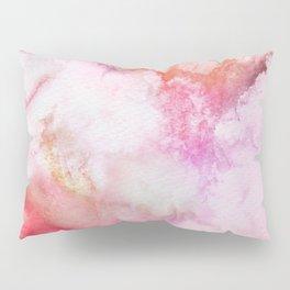 A 0 3 Pillow Sham