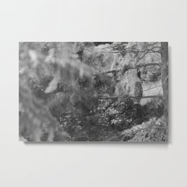 Owl Spirit in the Woods, Shades of Gray Metal Print