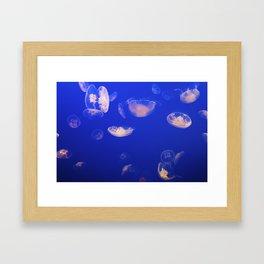 Jelly Gang Framed Art Print
