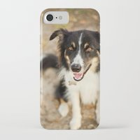 border collie iPhone & iPod Cases featuring Border Collie by Paw Prints By Jamie