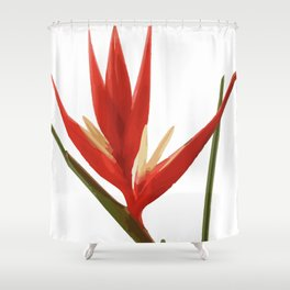 Helicona Flower red Shower Curtain