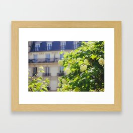 Promenade Plantée Framed Art Print