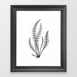 Minimal Black Fern Framed Art Print