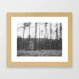 Autumn 9 Framed Art Print