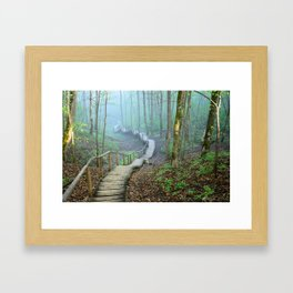 Walkway in the Forest Canvas Art Framed Art Print